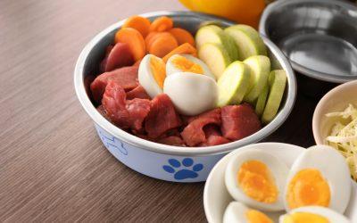 Health: Raw Food Diets