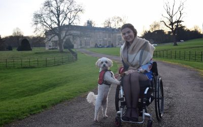 All about Dog A.I.D Assistance Dogs with Rachel Rodgers!